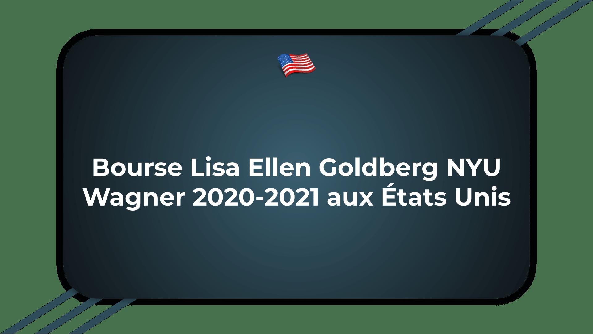 Bourse Lisa Ellen Goldberg NYU Wagner