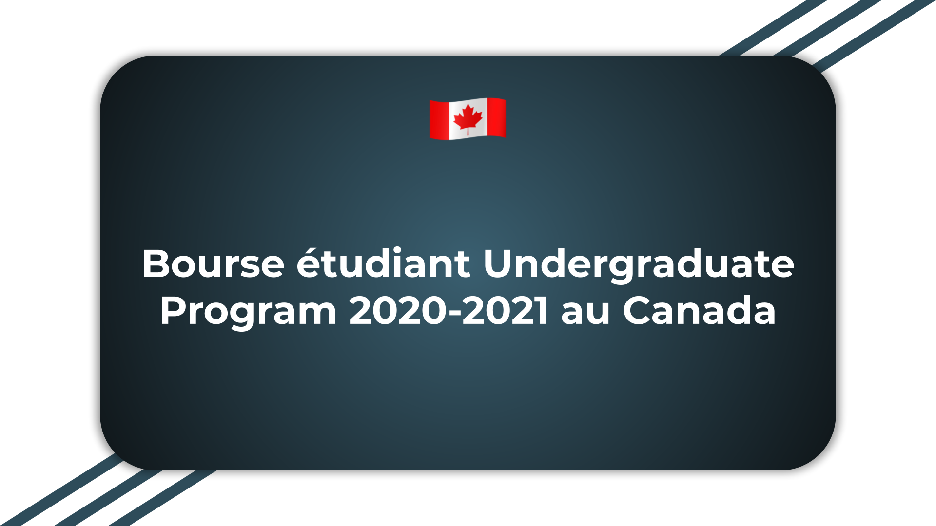 Bourse étudiant Undergraduate Program